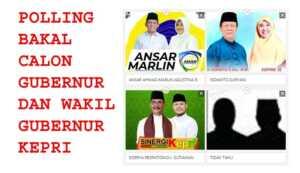 Polling Calon Gubernur dan Wakil Gubernur Kepri, siapa pasangan idola anda?