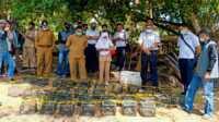 GM PT Timah Tbk Wilayah Operasi Kepri dan Riau Robertus Bambang Susilo meninjau pembibitan kepiting di kawasan reboisasi manngrove di Kuncur Barat, Kabupaten Karimun.